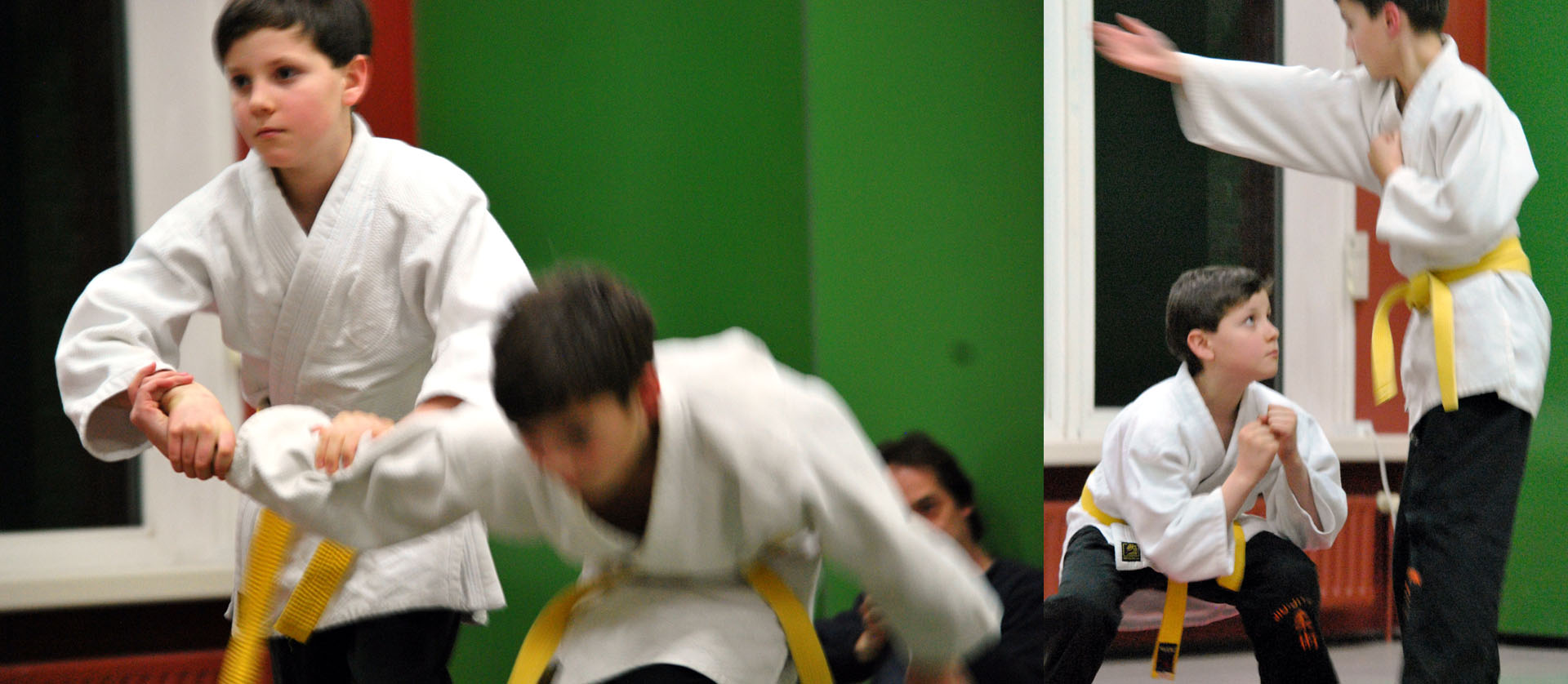 Jiu-Jitsu-Schnuppertraining für alle Interessierten